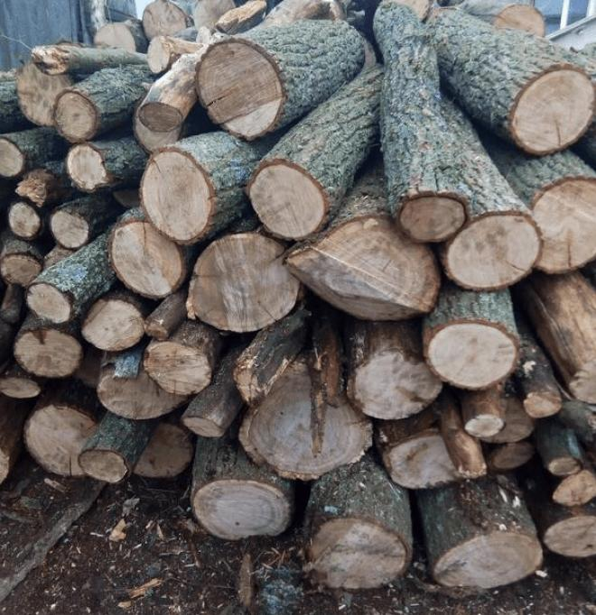 Купити дрова рубані, дрова метровий кругляк Ківерці